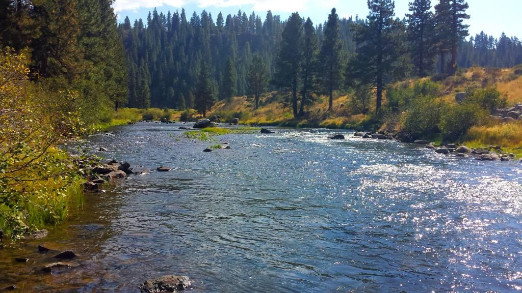 Truckee river 2016