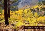 Showcase Green Creek Bridgeport ca