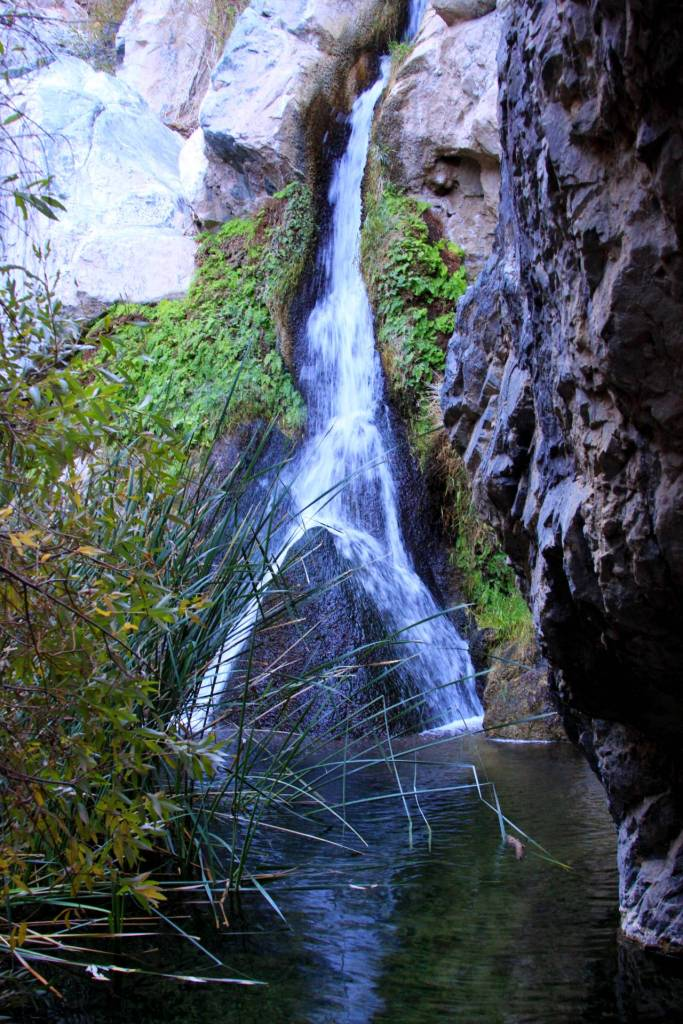 Darwin falls death Valley