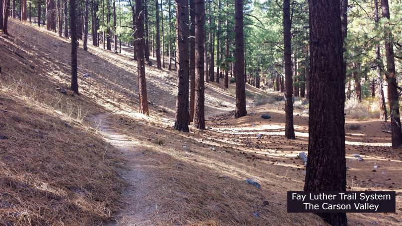 Fay Luther trail system