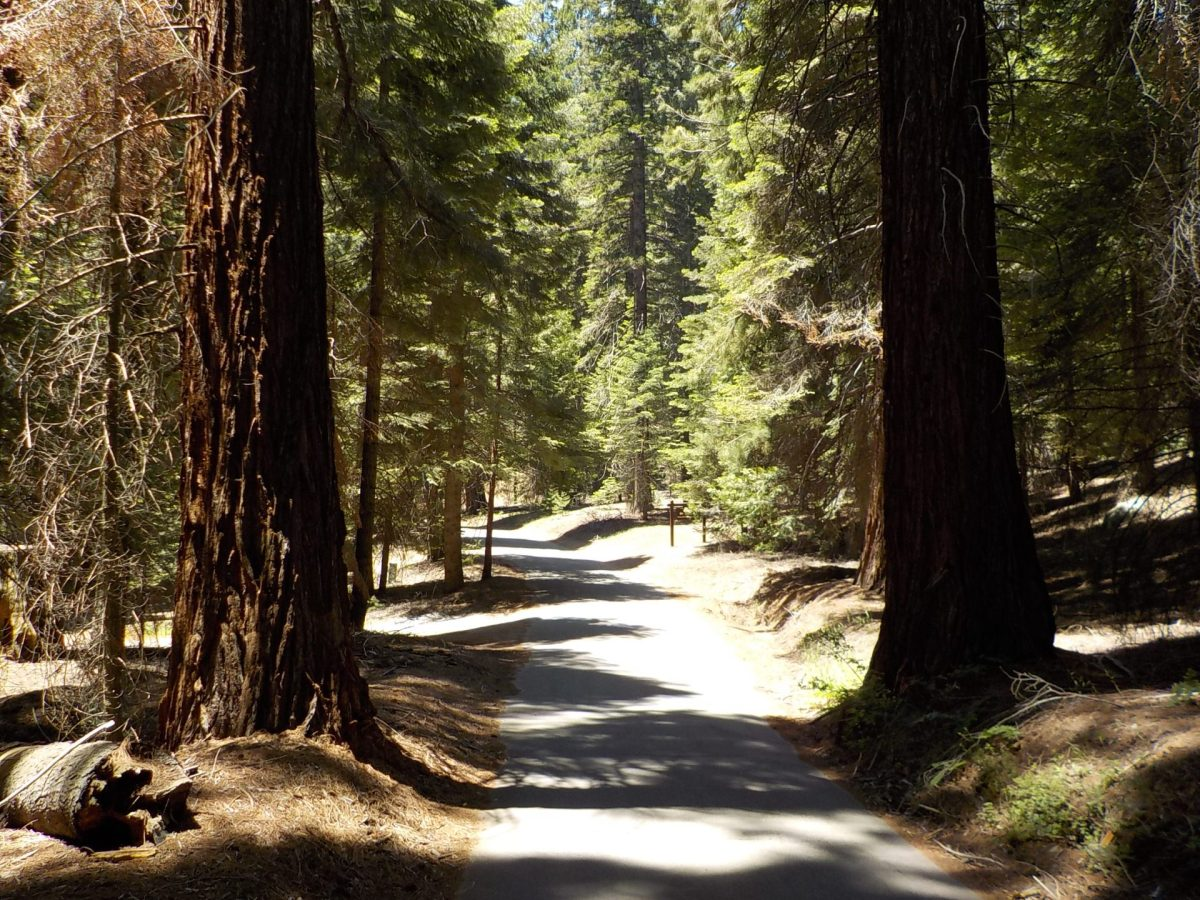 National Park Service Seeks Public Input on Project to Rehabilitate Mineral King Road Within Sequoia National Park