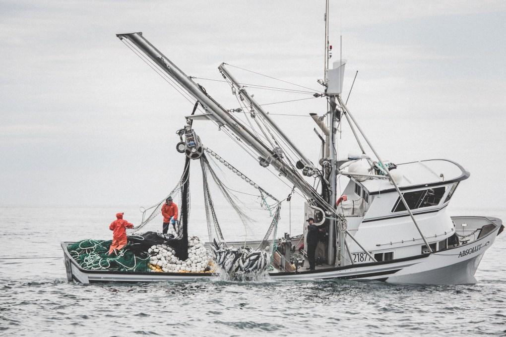 chignik boat absolut alaska