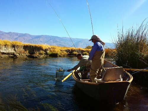 Bishop fly fishing lower owens river sierra for Bishop ca fishing
