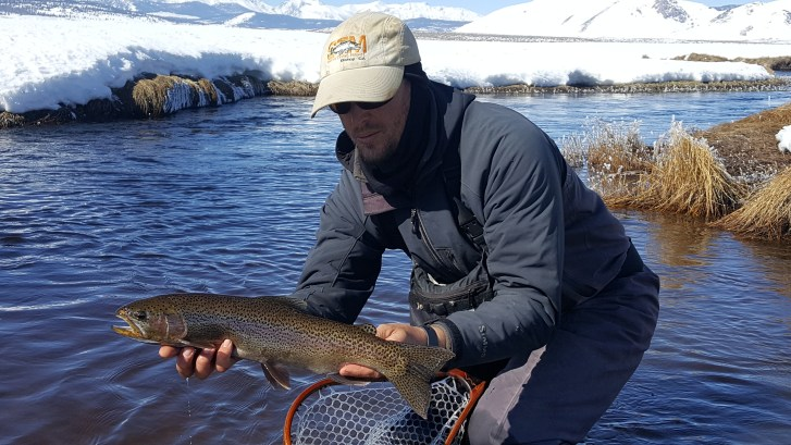 Large Trout landed on the Upper Owens River near Mammoth Lakes CA