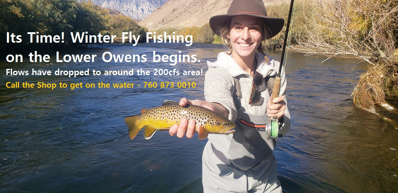 young lady holds a beautiful yellow above the water on the Lower Owens River near Bishop CA