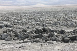 Tillage at Owens Lake