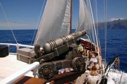 Flipper Uno: пушка на борту корабля
