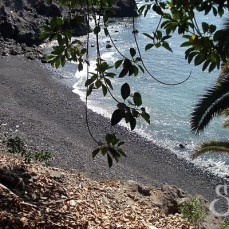 playa-mendez-tenerife-2