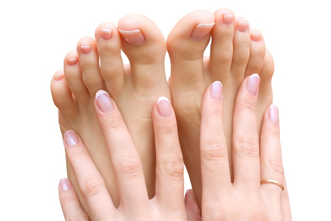 Complete guide to beautiful hands & feet!