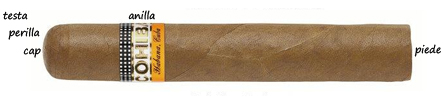 struttura.sigaro