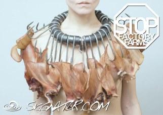 stop factory farms - Foto: Alexander Mainusch