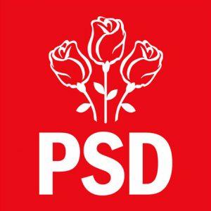 psd-partidul-social-democrat-romania-sigla