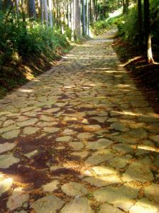 箱根石垣道