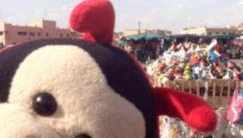 Travel Bug's 3 Fascinating Facts About Marrakesh