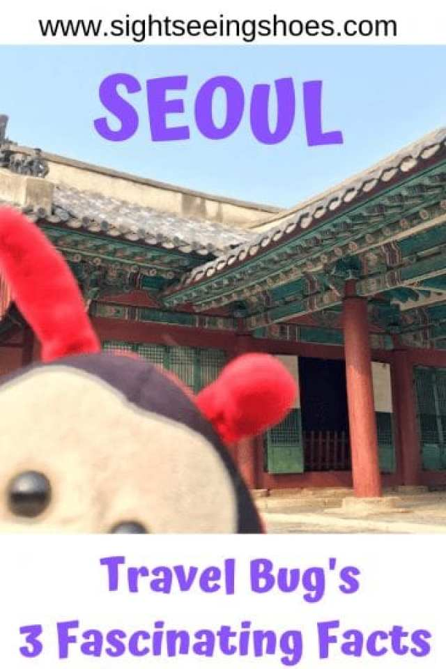 Travel Bug's 3 Fascinating Facts About Seoul