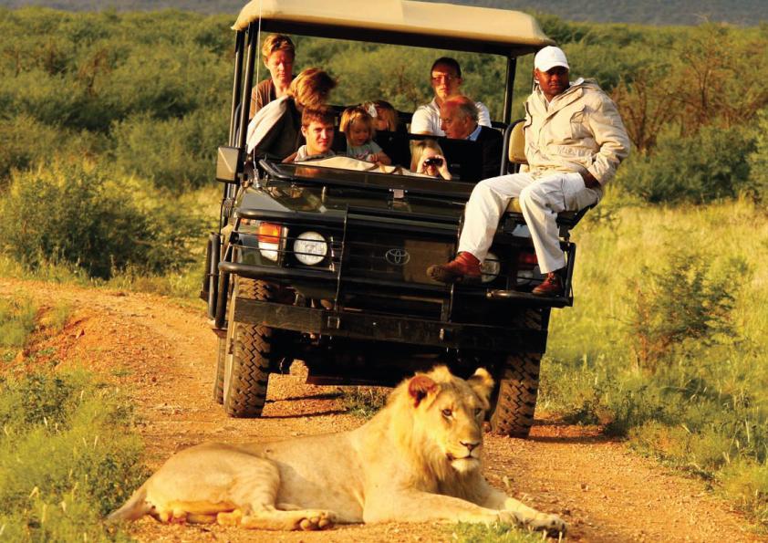 Maasai Mara Experience