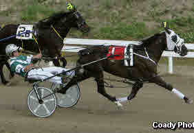 Standardbred trainer/driver, Kelly Hoerdt, uses Equiwinner for bleeding EIPH, tying-up and general health on his race horses.