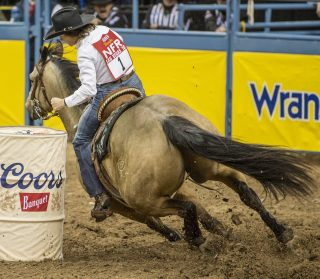 2x WPRA World Champion barrel racer, Mary Burger, uses Equiwinner for tying-up and bleeding EIPH.