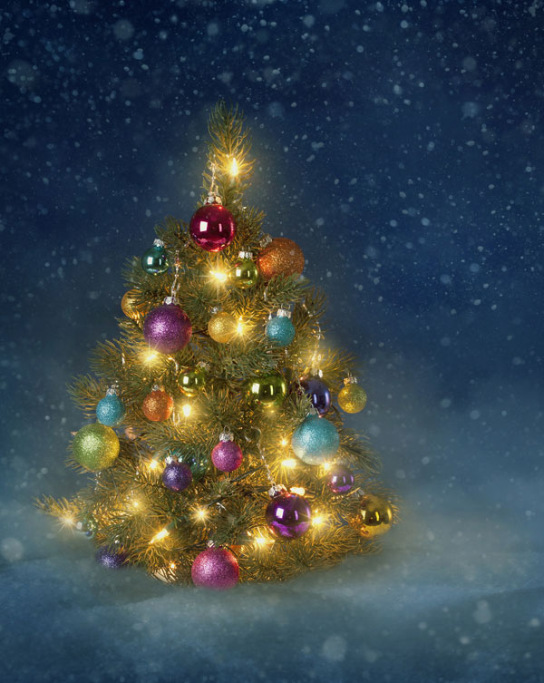 symbolic meaning of the christmas tree on whatsyoursign