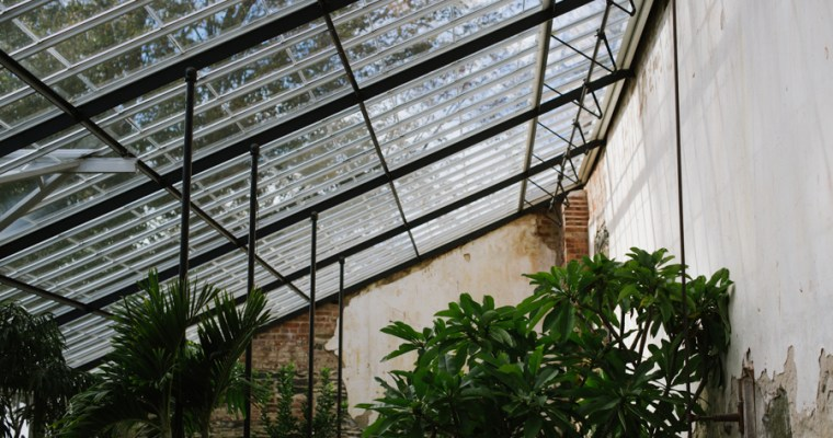 Living in a greenhouse