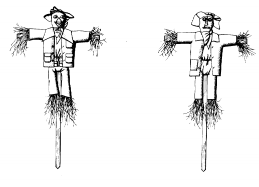 Amusing and Wiered Scarecrow Patent