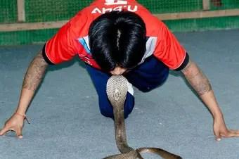 que-signfica-sonar-con-una-serpiente-amaestrada
