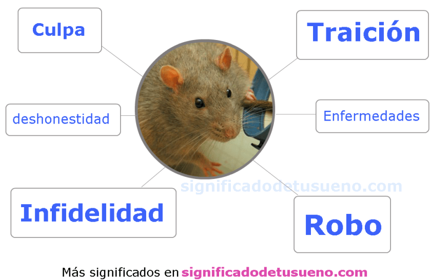que-significa-sonar-con-ratas-significado