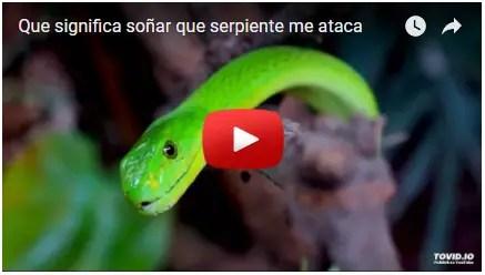 significa-sonar-serpiente-ataca-ahorca-asfixia