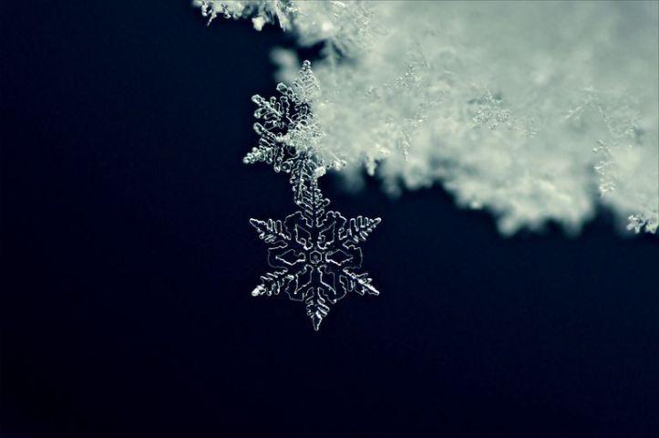 close-up-of-a-snowflake-519378367-5833b9005f9b58d5b1feede9