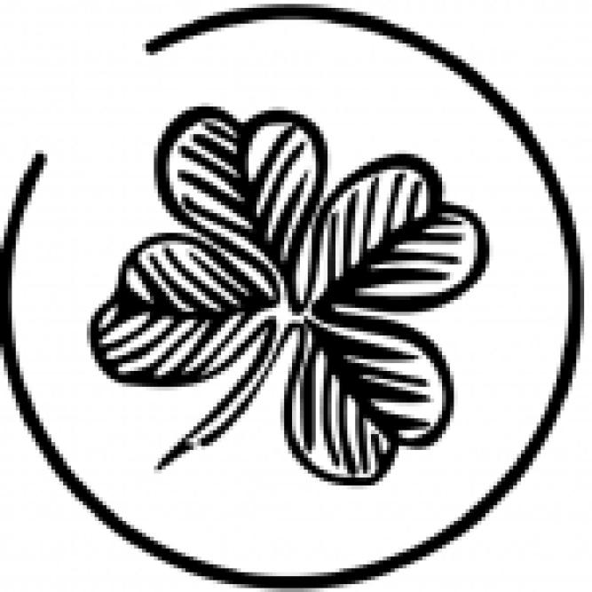 begonia silverspot dettagli
