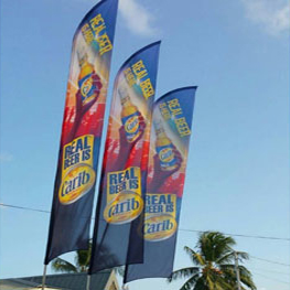 flag-carib-1