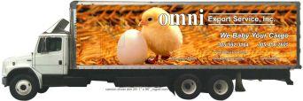 camion driver dim 29f - 1inch. x 96 inch. _rograf