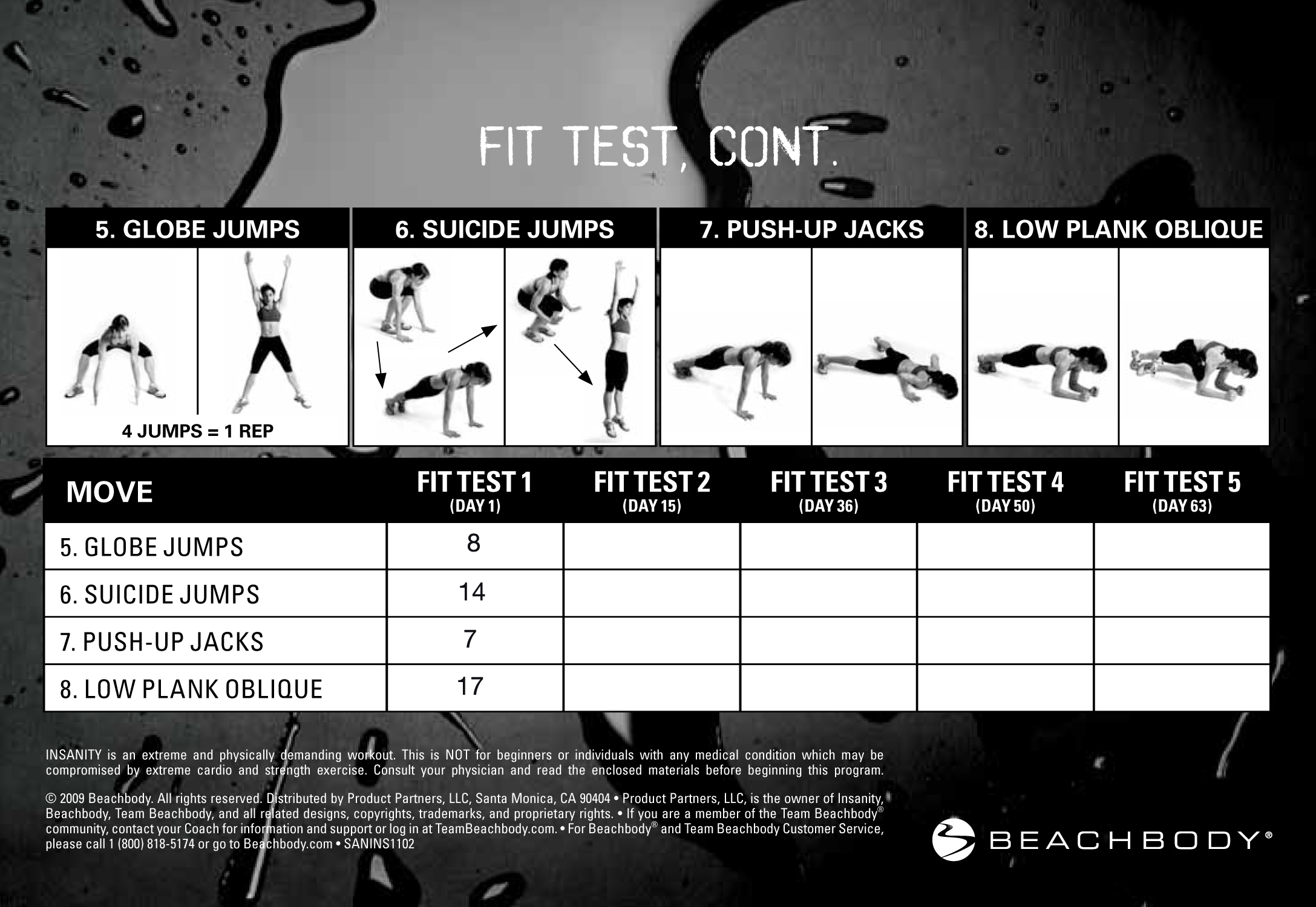 Insanity Workout Printable Fit Test