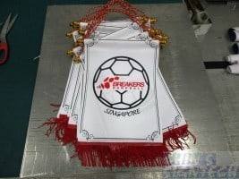 Fabric Plaque for Breakers Handball Singapore