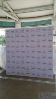Disposable Foam Board Backdrop for Wedding