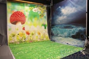 photography studio with Mushroom background