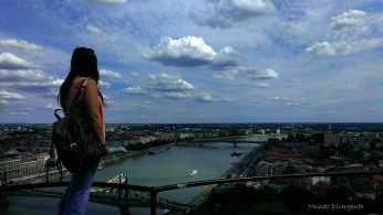 En el Danubio