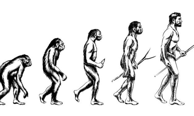 Apa itu Teori Evolusi? Mengetahui lebih dalam tentang Teori Evolusi pada Sejarah Manusia Purba