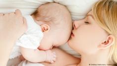 إيطاليا.كيف يجد حديثو الولادة طريقهم لحلمة الثدي؟
