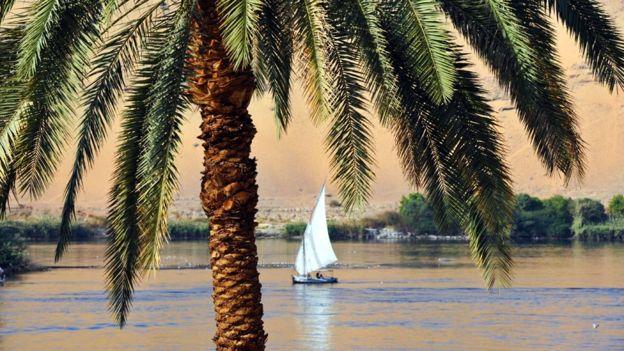 البيئة – النيل يلفظ أنفاسه