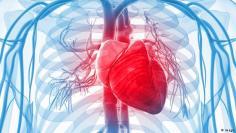 خطر الإصابة بعدم انتظام ضربات القلب مرتبط بعاملين
