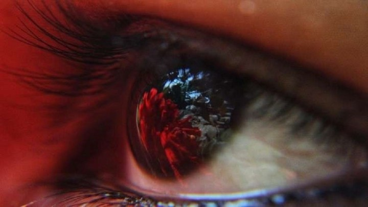 بكتيريا تستوطن مقلة العين قد تقضي على العمى