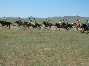 I'd be worried, too, with all these six year olds riding around like pros. Mongolians must learn to ride before they can walk, and it's obvious that they really love their horses,I thought, thinking back on twenty-odd mounted kids between the ages of six and ten we'd seen practising for the Nadaam Festival.