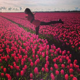 Tulips of Alkmaar. Savannah Grace