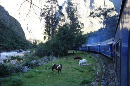 Ollantaytambo to Aguas Peru train ride