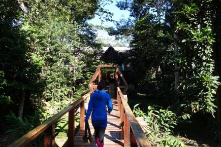 Tambopata National Reserve Peru - Savannah Grace