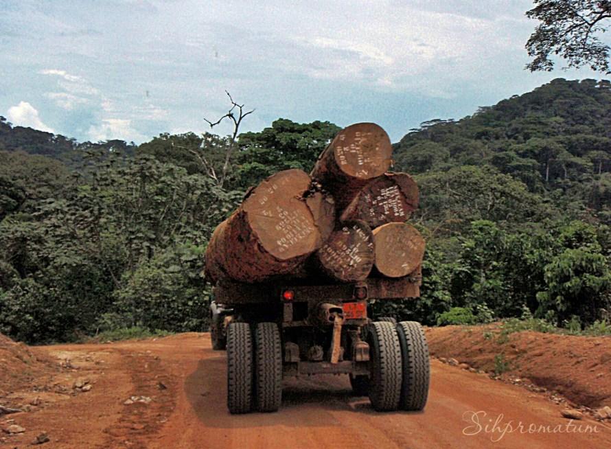 Logging truck. Kumba