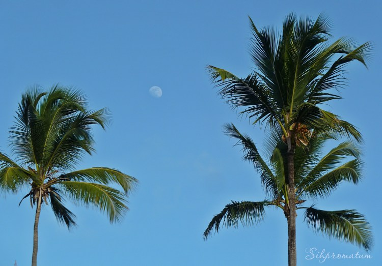 Dominican Republic Day Moon