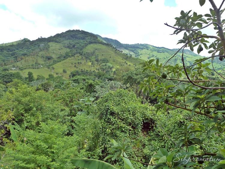 Dominican Republic view