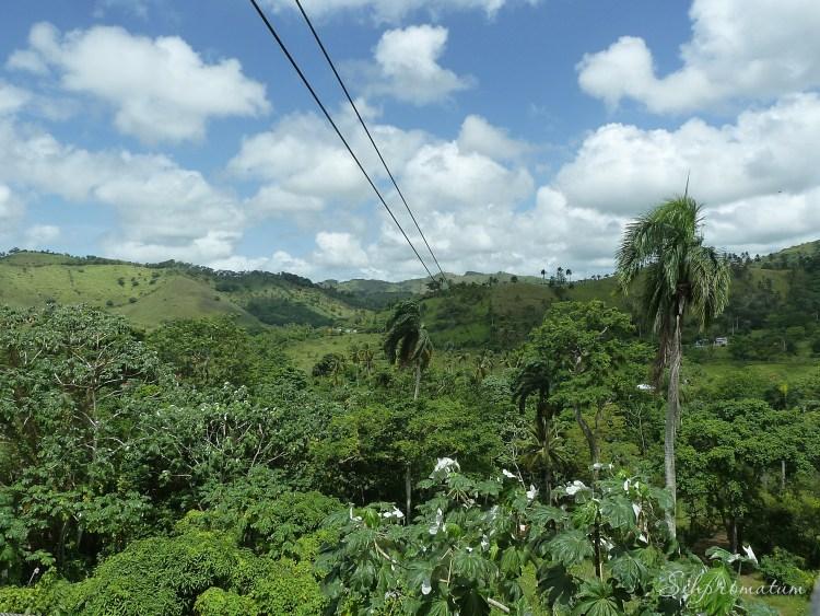 Zip line in to the jungle below.